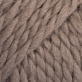 Light Brown 5310