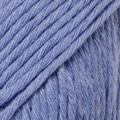 Blue Bonnet 33