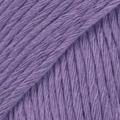 Violet 13